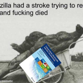Poor Godzilla  Swipe right für das Schmerzhafteste! . . . . .  #zahnis #dentalstudent #humani #medizin #medschool #medis #medimemes #memes #memezin #funny #lol #trichter #praxis #uni #studium #zahnimemes #staatsexamen #phantomkurs #assistenzzahnarzt #zahnmedizinstudium #medizinstudium #zahntechnik #zahntechniker #candmeddent #studmeddent